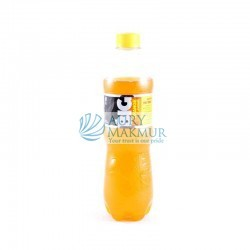 BIG ORANGE PET 535ml