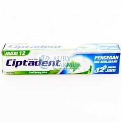 CIPTADENT Toothpaste COOL SPRING MINT 190gr